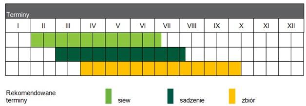 NVI_SV3506CV_calendar